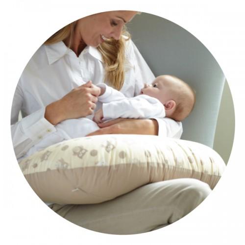 Dreamgenii 孕婦及哺乳枕(兩用)